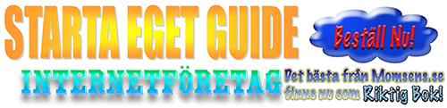 Starta eget guide - Internetföretag. En bok om att registrera företag och hur man bokför, för entreprenörer, bloggare och frilansare.