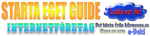 Starta eget guide - Internetföretag. En bok om att registrera företag och hur man bokför.